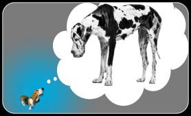small-dog-big-dog1